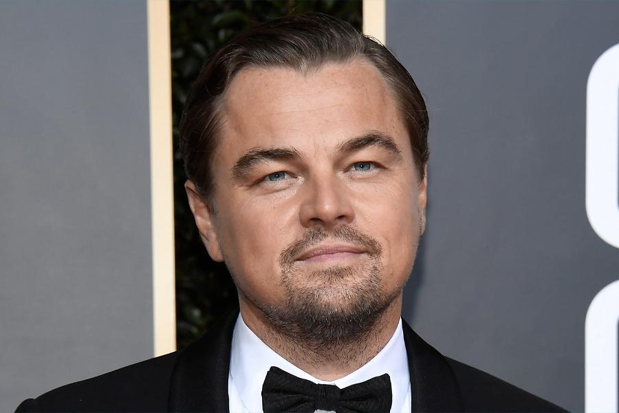 So kaufen Sie eine Privatinsel - Leonardo DiCaprio