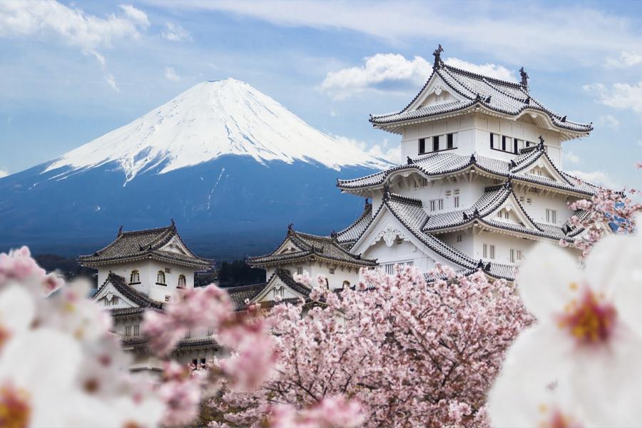 Japan bietet möglicherweise an, einen Teil Ihrer nächsten Urlaubsrechnung zu bezahlen