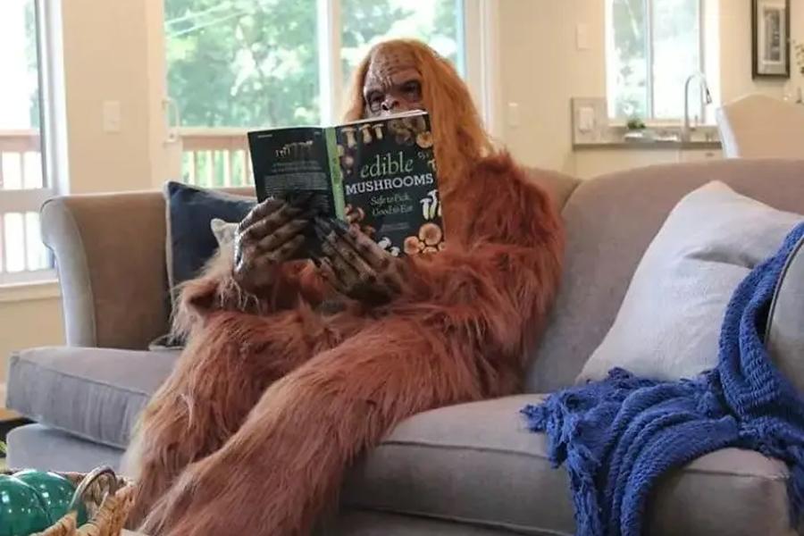 """Das urkomische """"Bigfoot"""" -Haus des Immobilienmaklers wird viral"""