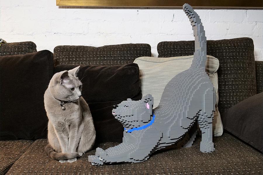 Lego Katze