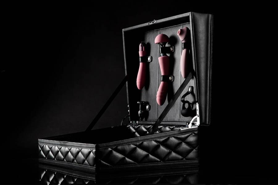 Der TickleTrunkClub Trunk ist das luxuriöseste Sexspielzeug-Kit, das wir je gesehen haben
