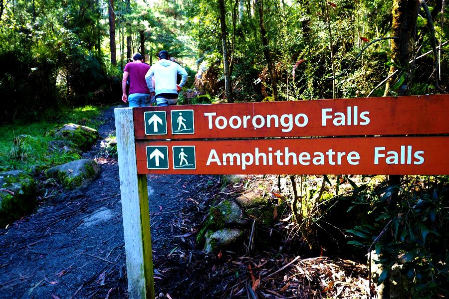 Wanderweg Noojee - Toorongo Falls