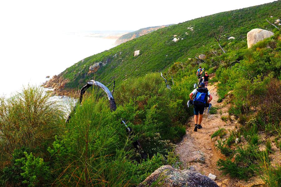 Wanderweg Wilsons Vorgebirge - Zungenpunkt