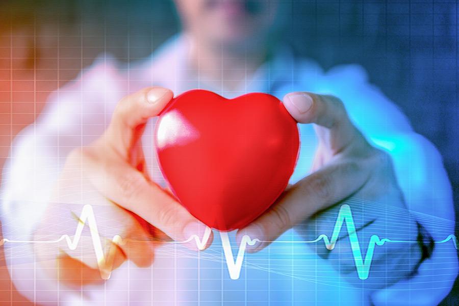 Vorteile der Kurkuma für Herzkrankheiten