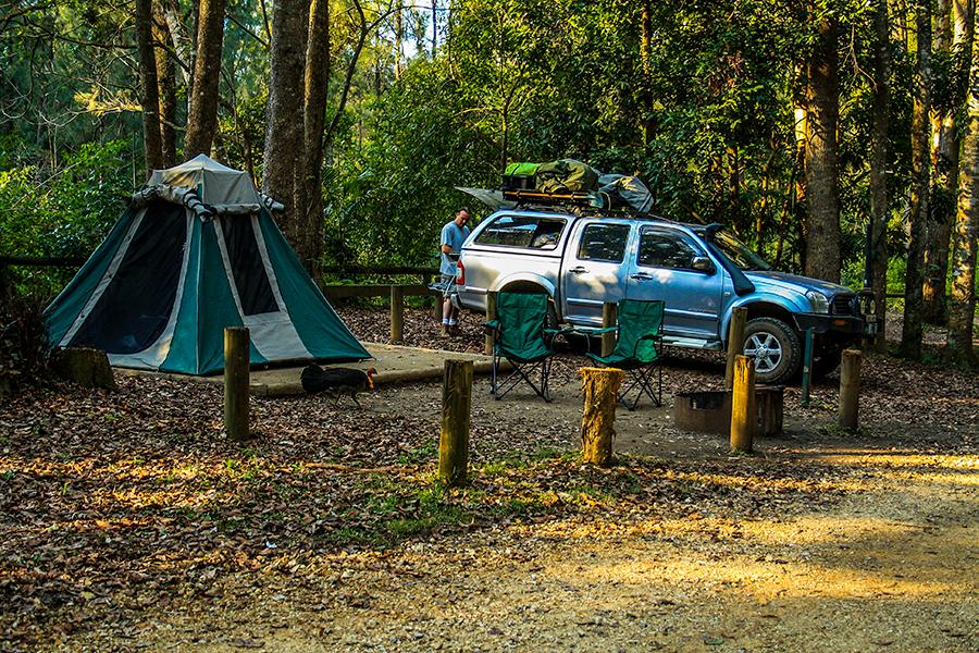 Beste Campingplätze in der Nähe des Brisbane Conondale National Park