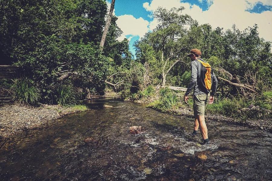 Beste Campingplätze in der Nähe von Brisbane Cedar Grove Camping Area