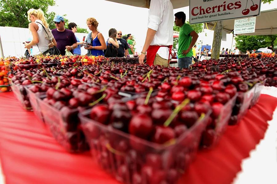 National Cherry Picking Festival Best Family Fruit Picking Sydney