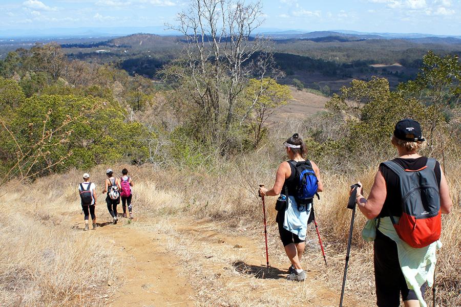 Beste Wanderwege in Brisbane Mermaid Mountain, Brisbane Forest Park