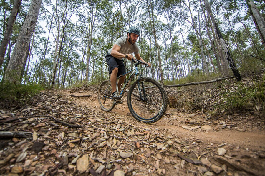 Beste Wanderwege in Brisbane Bunyaville Track, Bunyaville Regional Park