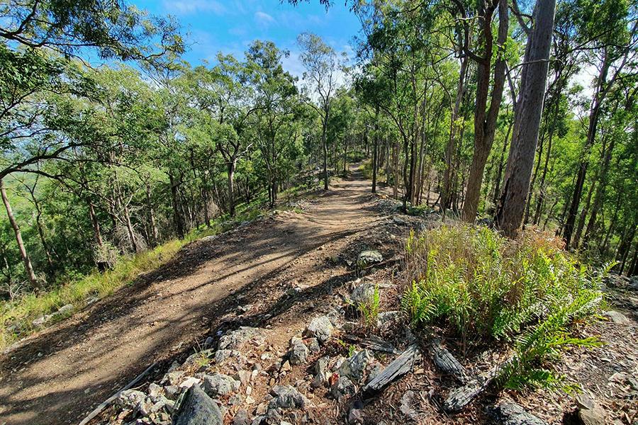 Die besten Wanderwege in Brisbane Devils Break Loop im Moggill Regional Park