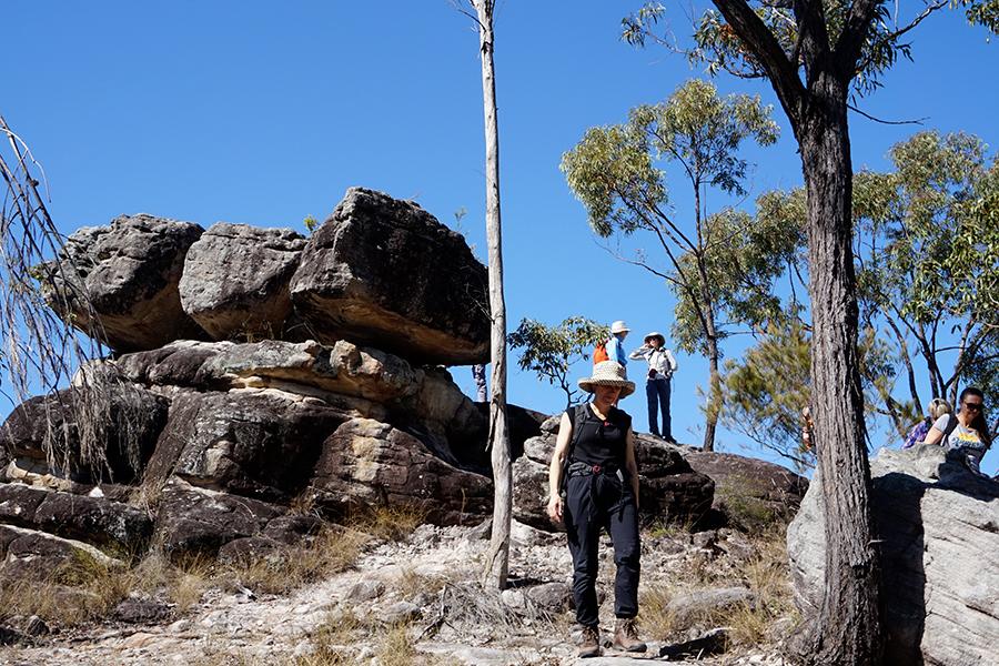 Beste Wanderwege in Brisbane Poets Rock, Karawatha Forest