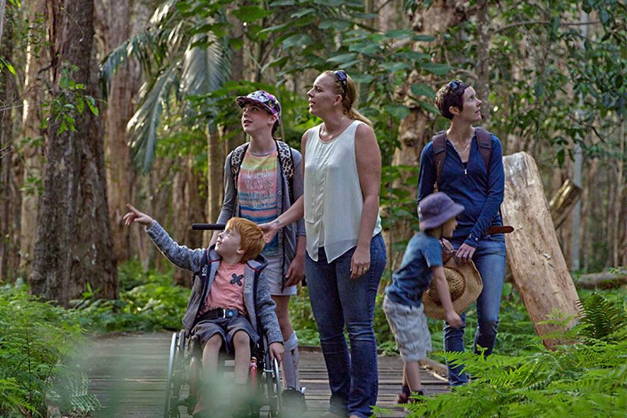 Beste Wanderwege in Brisbane Buhot Creek Circuit, Daisy Hill Conservation Park