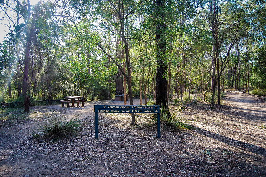 Beste Wanderwege in Brisbane Venman Circuit, Venman Bushland National Park