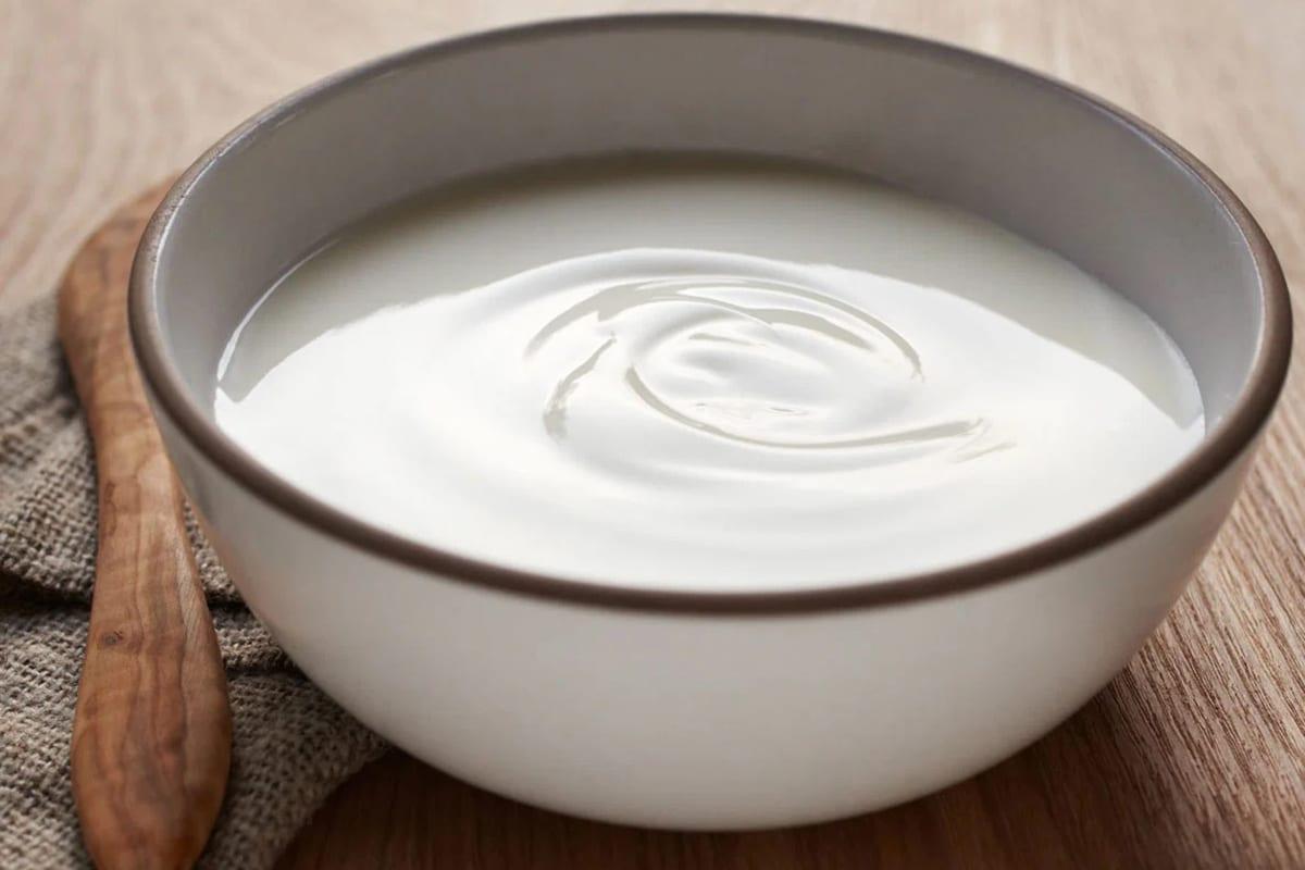 Best High Protein Snacks for On the Go Greek Yogurt