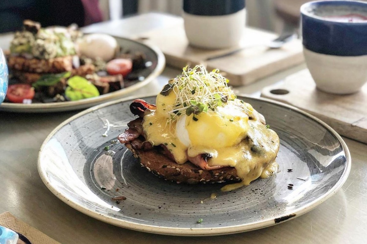 Best Bondi Cafes for Breakfast and Brunch The Nine
